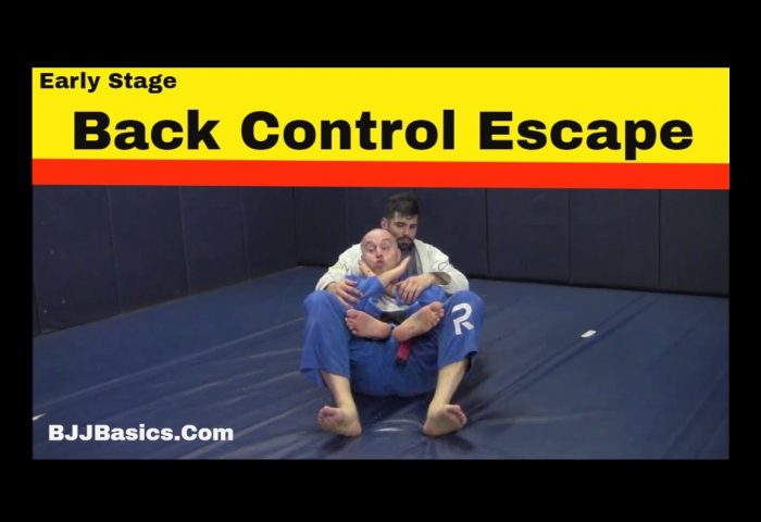 Early Stage Back Escape in BJJ